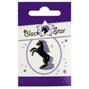 "Pin ""Black Star"""