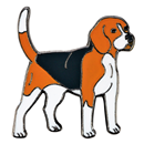 "Lapel Pin ""Beagle"""